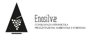 logo_enosilvae_o